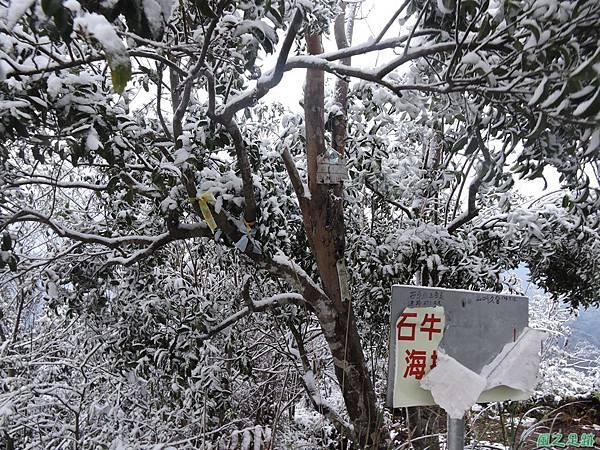石牛山20160124(77)