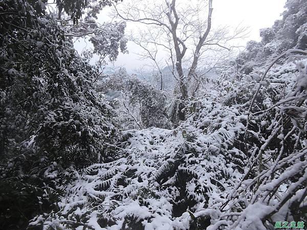 石牛山20160124(97)