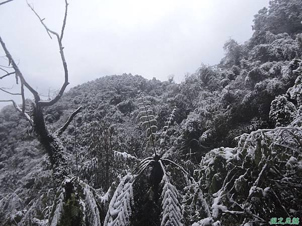 石牛山20160124(98)