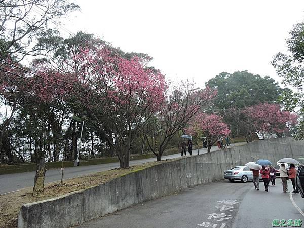 協雲宮20160220(1)