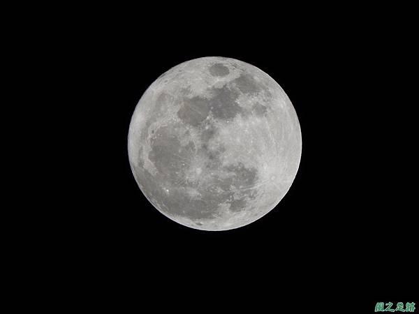 超級月亮20161114(8)