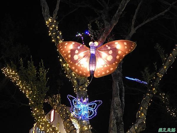 桃園燈會20170211(7)