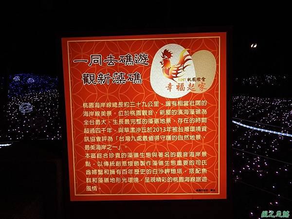 桃園燈會20170215(2)