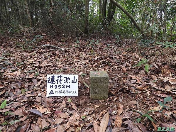 蓮花池山20170311(7)