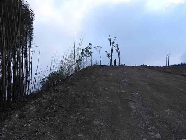 司馬限山東南峰行(10)DSCN6702