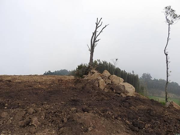 司馬限山東南峰行(12)DSCN6702