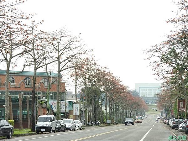 央大木棉道20170411(1)
