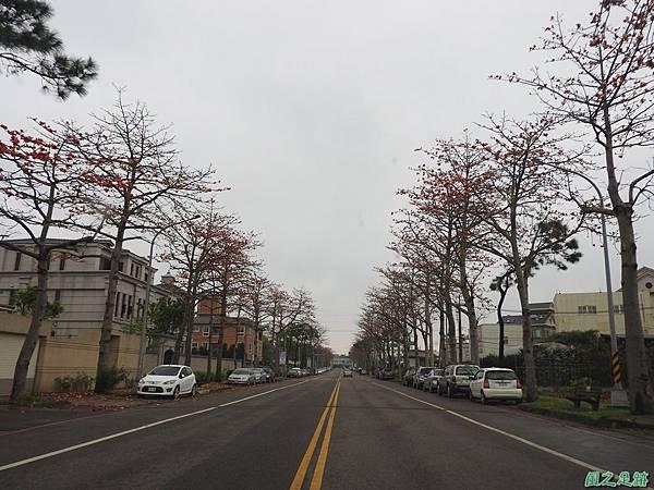 央大木棉道20170411(35)