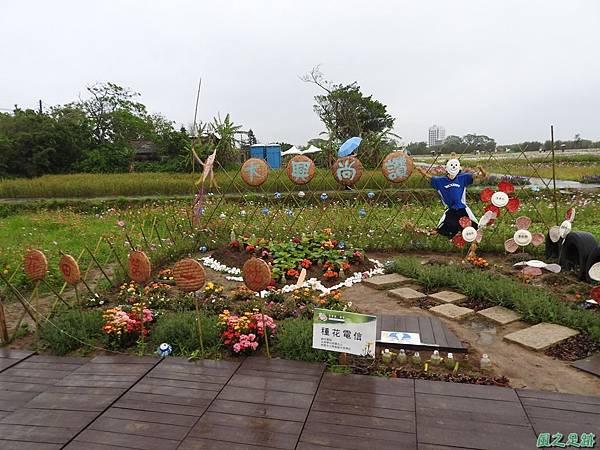 桃園彩色海芋節20170411(2)