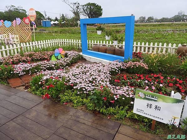 桃園彩色海芋節20170411(5)