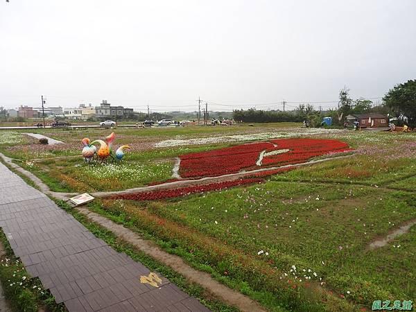 桃園彩色海芋節20170411(36)