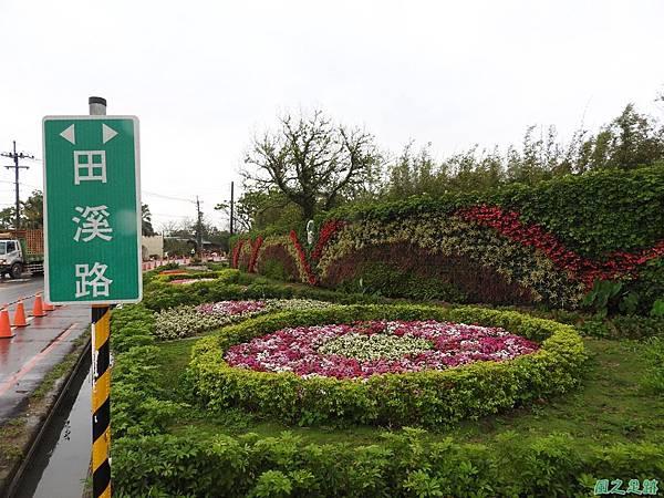 桃園彩色海芋節20170411(53)