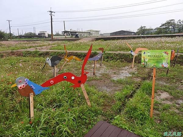 桃園彩色海芋節20170411(64)