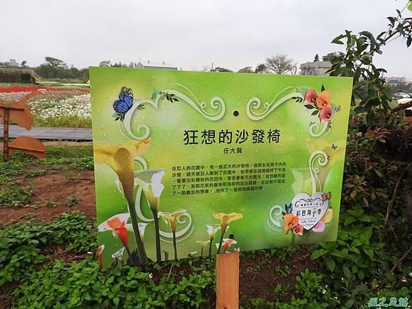 桃園彩色海芋節20170411(72)