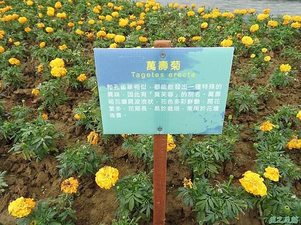 桃園農博20170424(41)