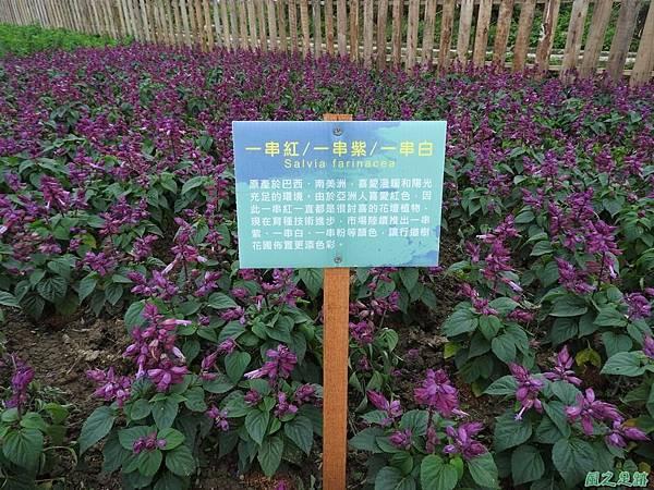 桃園農博20170424(105)