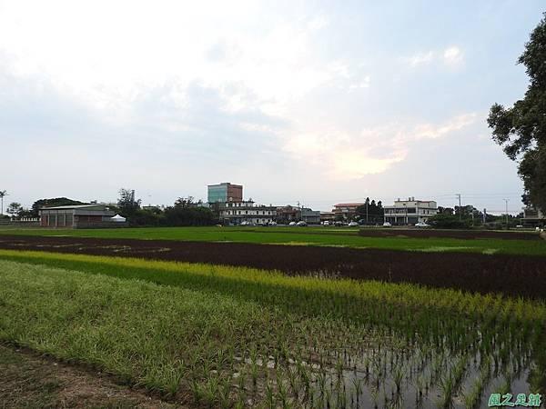 桃園農博會20170501(6)