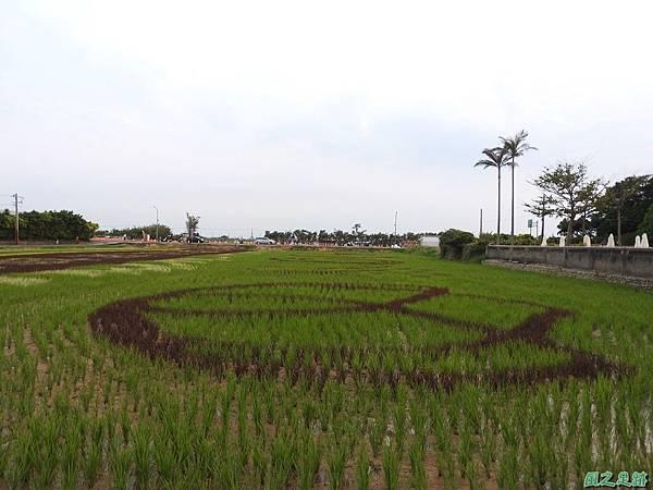 桃園農博會20170501(25)