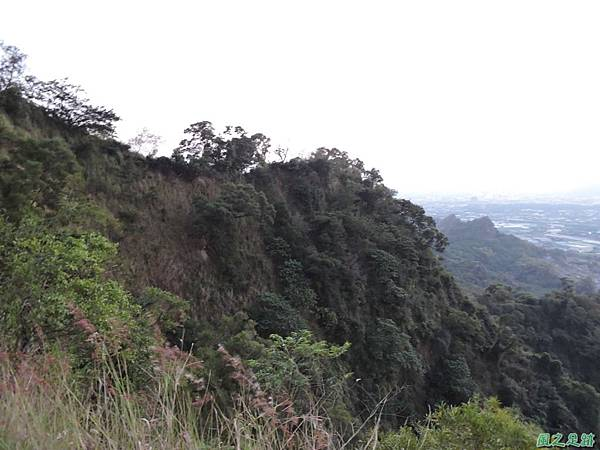 大社觀音山20160208(59)