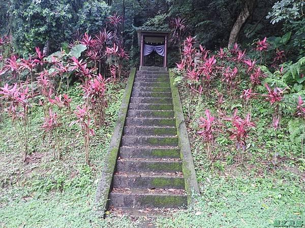 圓山水神社20160609(9)