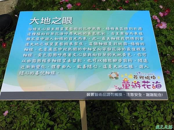 桃園花彩節20171029(43)