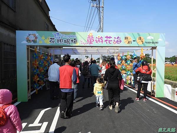 桃園花彩節20171029(70)