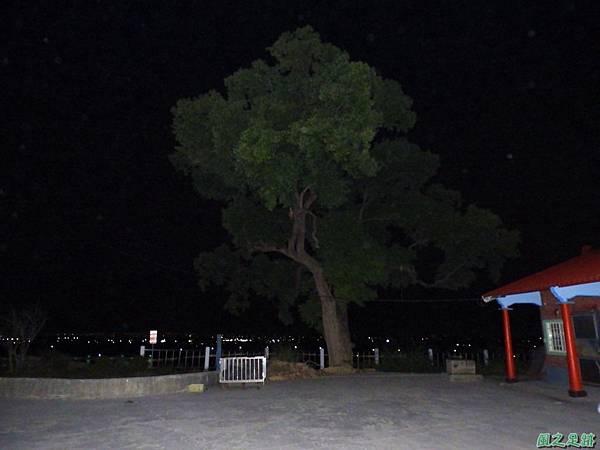 林內神社20171125(42)