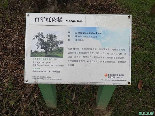 鹿陶洋江家聚落20180204(64)