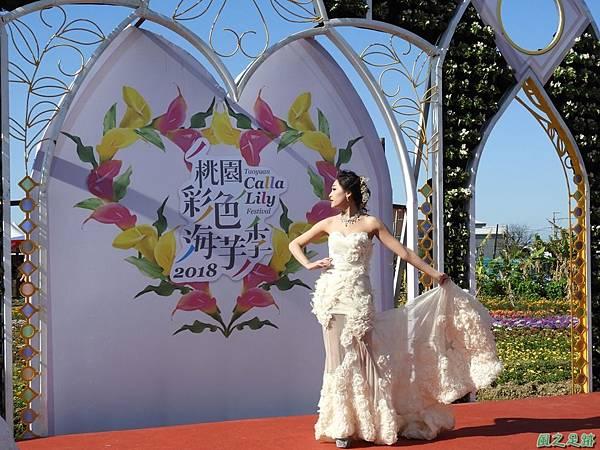 桃園彩芋季20180310(57)