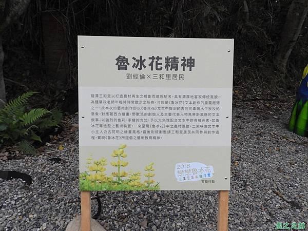 龍潭戀戀魯冰花20180306(56)