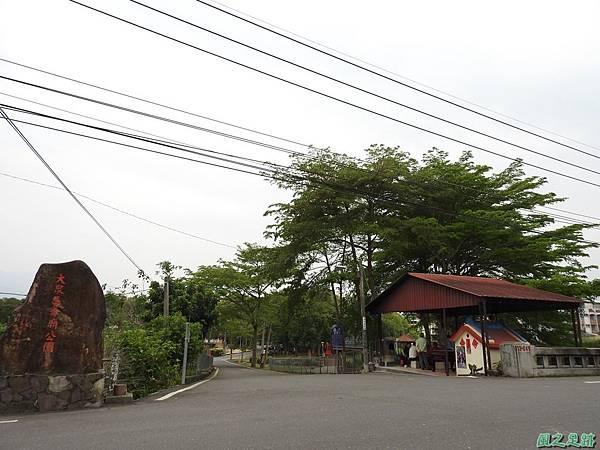 集集大樟樹20170415(25)