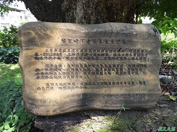 埔里愛蘭老樹20170916(1)