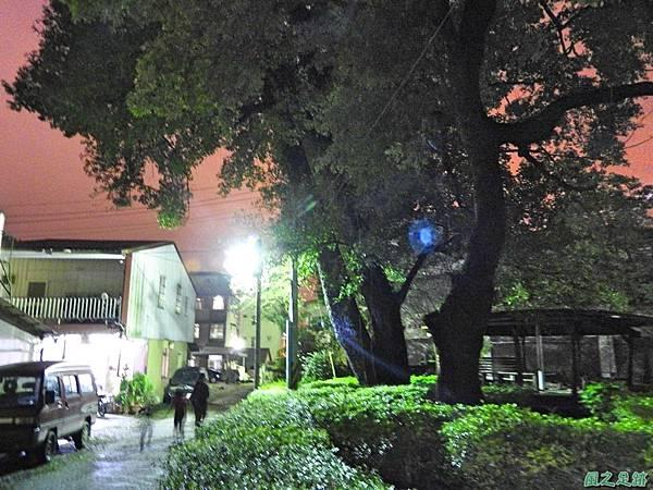 蜈蚣社區楓香老樹群20160917(18)