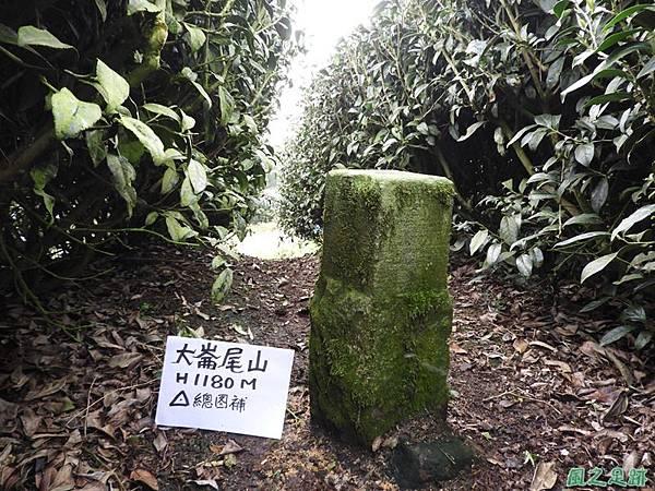 大崙尾山20180317(3).JPG