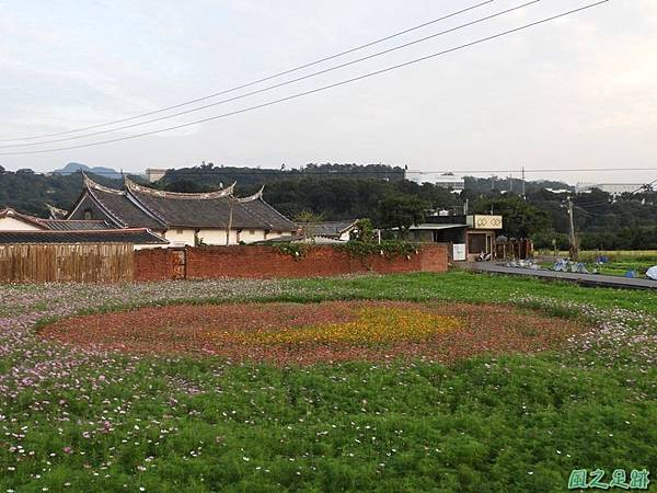 桃園花彩節_大溪20181115(1).JPG