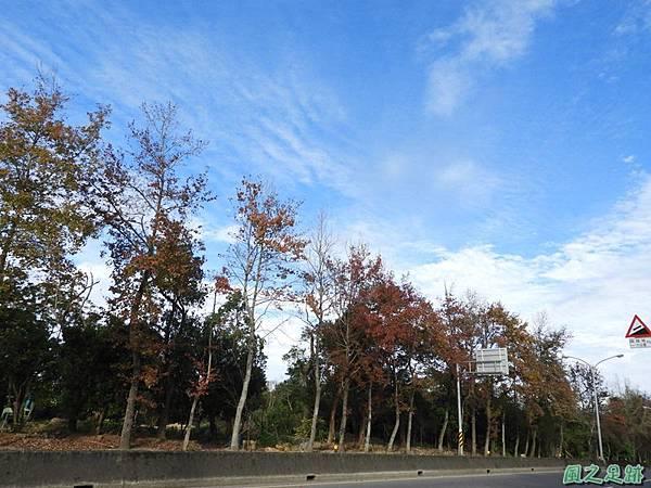 楓景20180101(1)