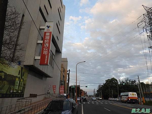 落羽松大道20190106(49)