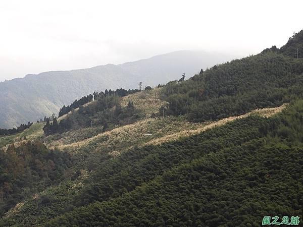 鳥嘴山南峰20190105(1)