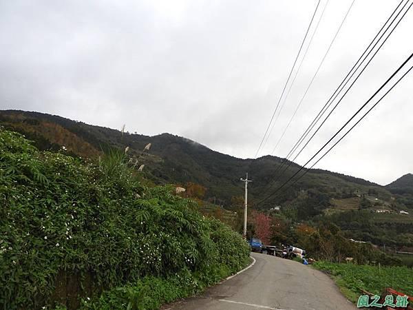 鳥嘴山南峰20190105(6)