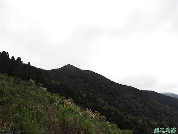 鳥嘴山南峰20190105(15)