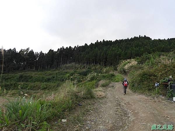 鳥嘴山南峰20190105(16)