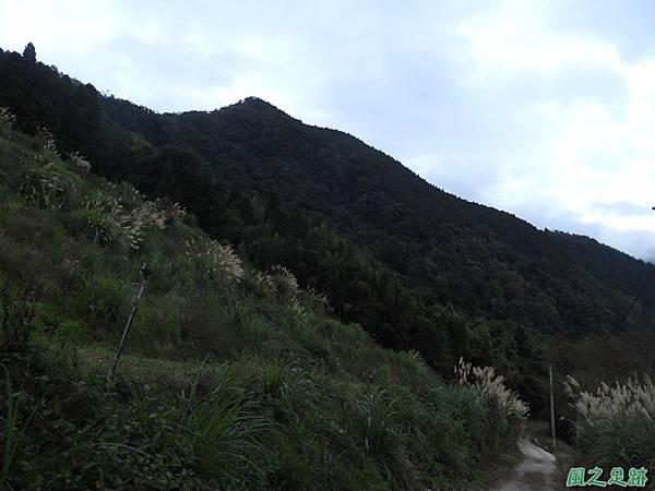 鳥嘴山南峰20190105(46)