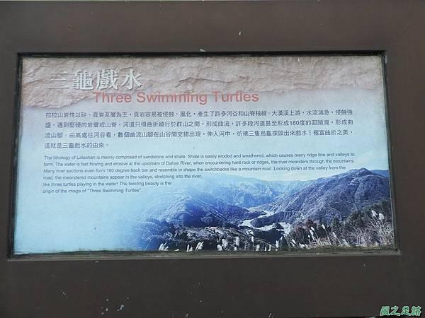 三龜戲水(巴陵橋)20190127(36).JPG