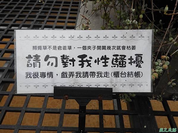 福祥多肉植物20190310(67)