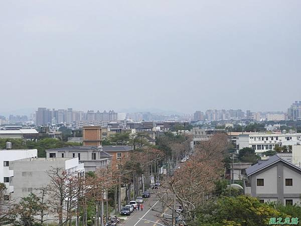 中大木棉道20190405(5).JPG