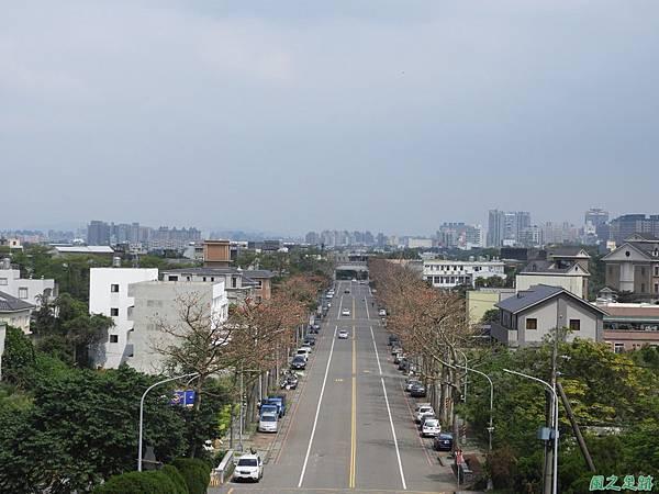 中大木棉道20190405(13).JPG