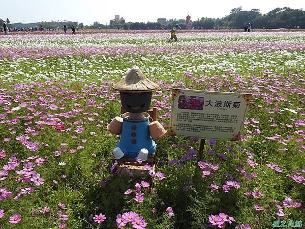 花彩節中壢場20191117(20).JPG