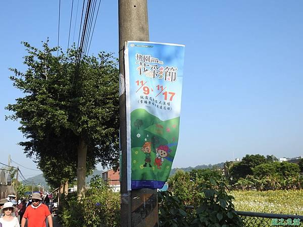 花彩節大溪場20191117(4).JPG
