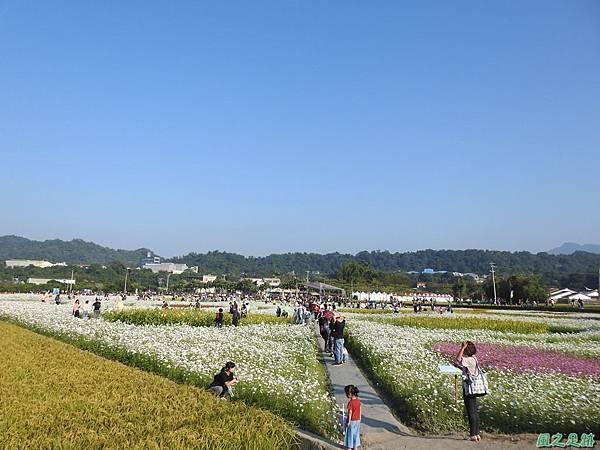 花彩節大溪場20191117(34).JPG