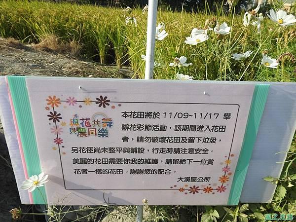 花彩節大溪場20191117(33).JPG